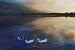 Kartepe Sukay Park'ın Huzur Kokan Atmosferinde Muhteşem Manzara ve Temiz Hava Eşliğinde Doğayla İç İçe Kahvaltı Menüsü