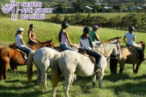 Gebze Atlı Spor Kulübü'nde Eğitmenler Gözetiminde Atla Safari ve At Biniciliği Eğitimi Seçenekleri