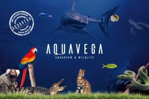 Avrupa'nın En Uzun 3. Tünel Akvaryumu Aqua Vega Akvaryum'a Giriş Bileti