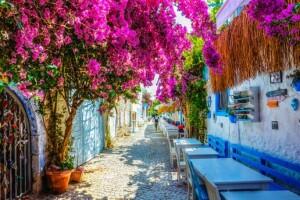 3 Günlük Alaçatı Ot Festivali, Şirince, Selçuk, Efes, Meryem Ana Turu