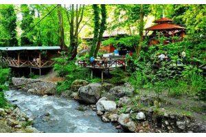 Günübirlik Maşukiye, Ormanya, Mahmudiye & Sapanca Turu