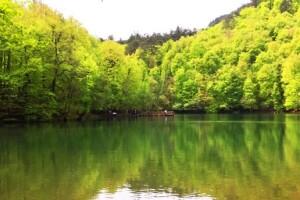 Her Pazar Günübirlik Doğa Harikası Yedigöller Turu