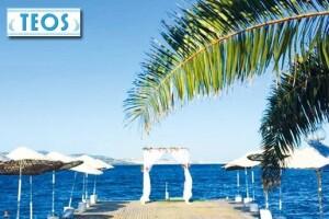 Kınalıada Teos Beach Club'de Şezlong ve Şemsiye Dahil Beach Girişi ve Kahvaltı Seçenekleri