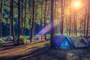 Her Hafta Sonu Hareketle 1 Gece 2 Gün Yedigöller Çadır Kampı Turu