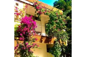 Antalya Family Butik Hotel'de Konfor Dolu Konaklama Seçenekleri