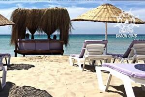 Çeşme Dharma Beach Club'den Sıcak Havadan Bunalanlar İçin Plaj Girişi ve Burger Menüsü