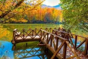 Her Pazar Kalkışlı Doğaya Doyacağınız Yedigöller Turu
