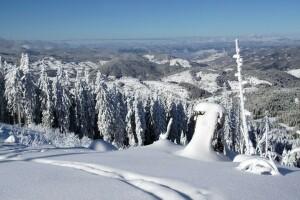 Sömestr Tatiline Özel Erken Rezervasyon Fiyatları İle 4 Gece 5 Gün Kahvaltı veya Yarım Pansiyon Konaklama Dahil Bulgaristan Pamporovo Kayak Turu