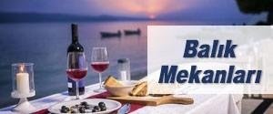 İstanbul Balık Mekanları